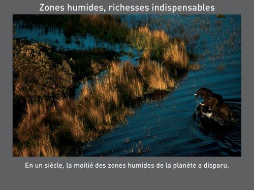 zoneshumides.jpg